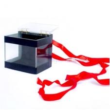 Коробка пророчеств (Crystal Switch Box)