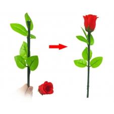 Восстанавливающаяся роза (красная)